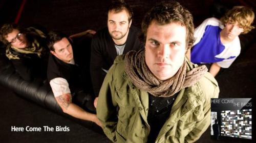 festivalbirds